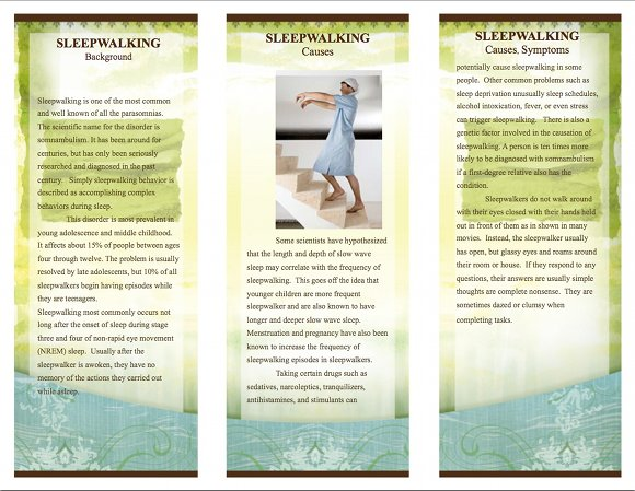 Sleepwalking Brochure, page 2