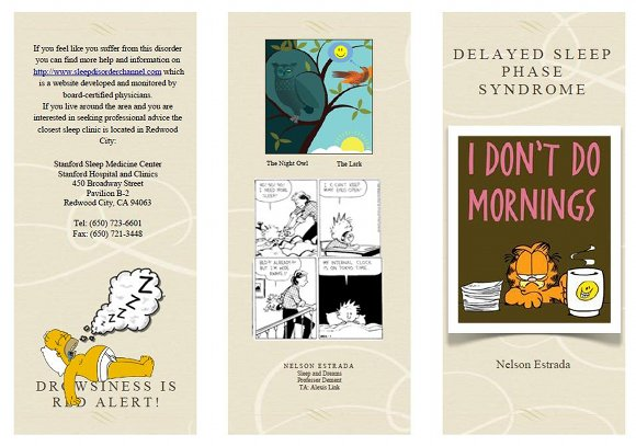 Delayed Sleep Phase Syndrome Brochure, page 1